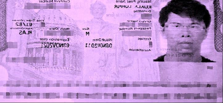 le-visa.jpg